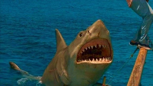 Jaws: The Revenge 10 things to love about Jaws The Revenge Den of Geek