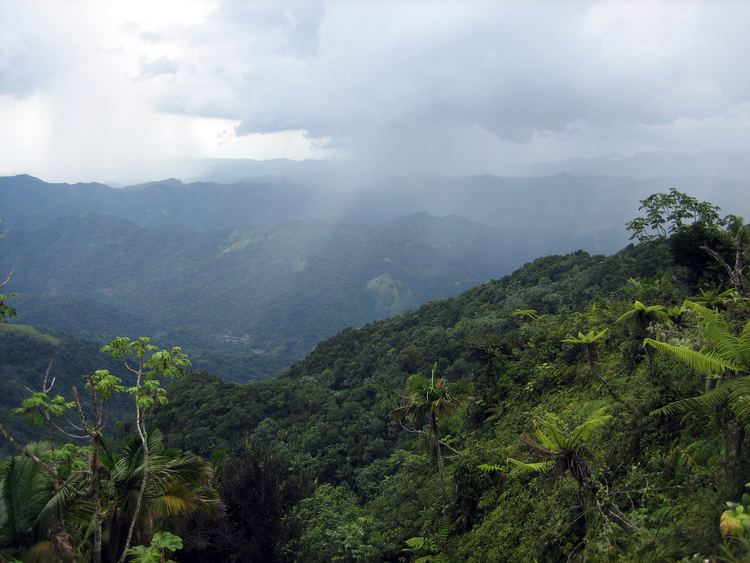 Jayuya, Puerto Rico Beautiful Landscapes of Jayuya, Puerto Rico