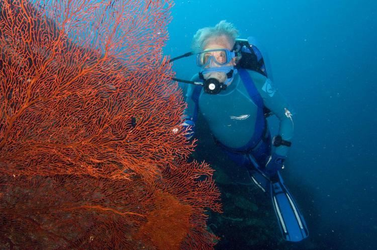 Jean-Michel Cousteau JeanMichel Cousteaus Secret Ocean 3D The ocean as never seen