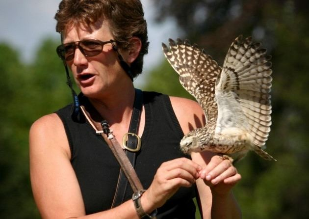Jemima Parry-Jones Falconry and hawking event celebrates 25th anniversary