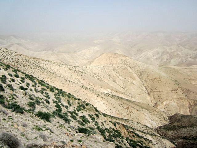 Jericho Beautiful Landscapes of Jericho