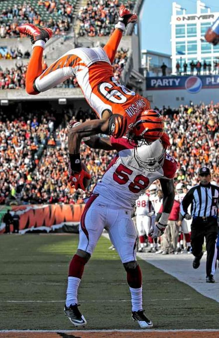 Jerome Simpson VIDEO See Bengals WR flip for TD NY Daily News