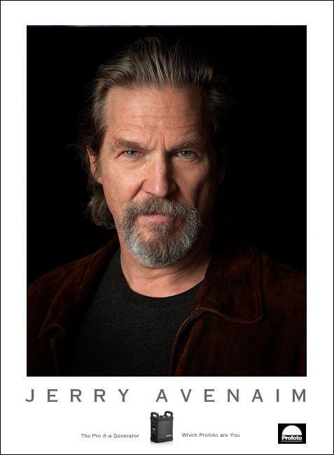 Jerry Avenaim wwwavenaimcomBridgesPoster2jpg