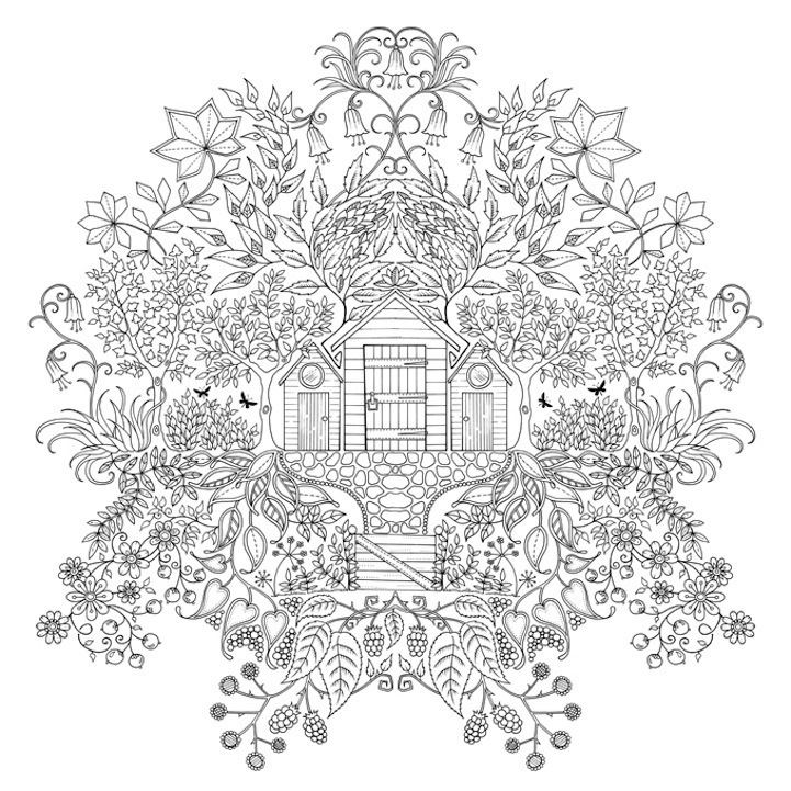 Johanna Basford Enchanting Coloring Books For GrownUps By