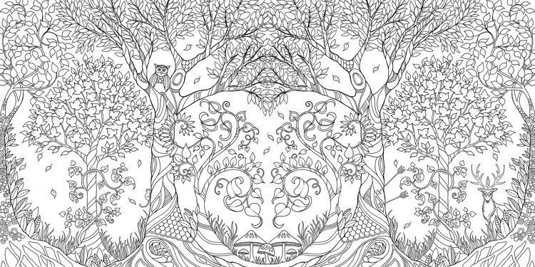 Johanna Basford Amazoncom Enchanted Forest An Inky Quest amp Coloring
