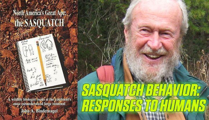 John Bindernagel The Crypto Blast Sasquatch Behavior Responses to Humans an