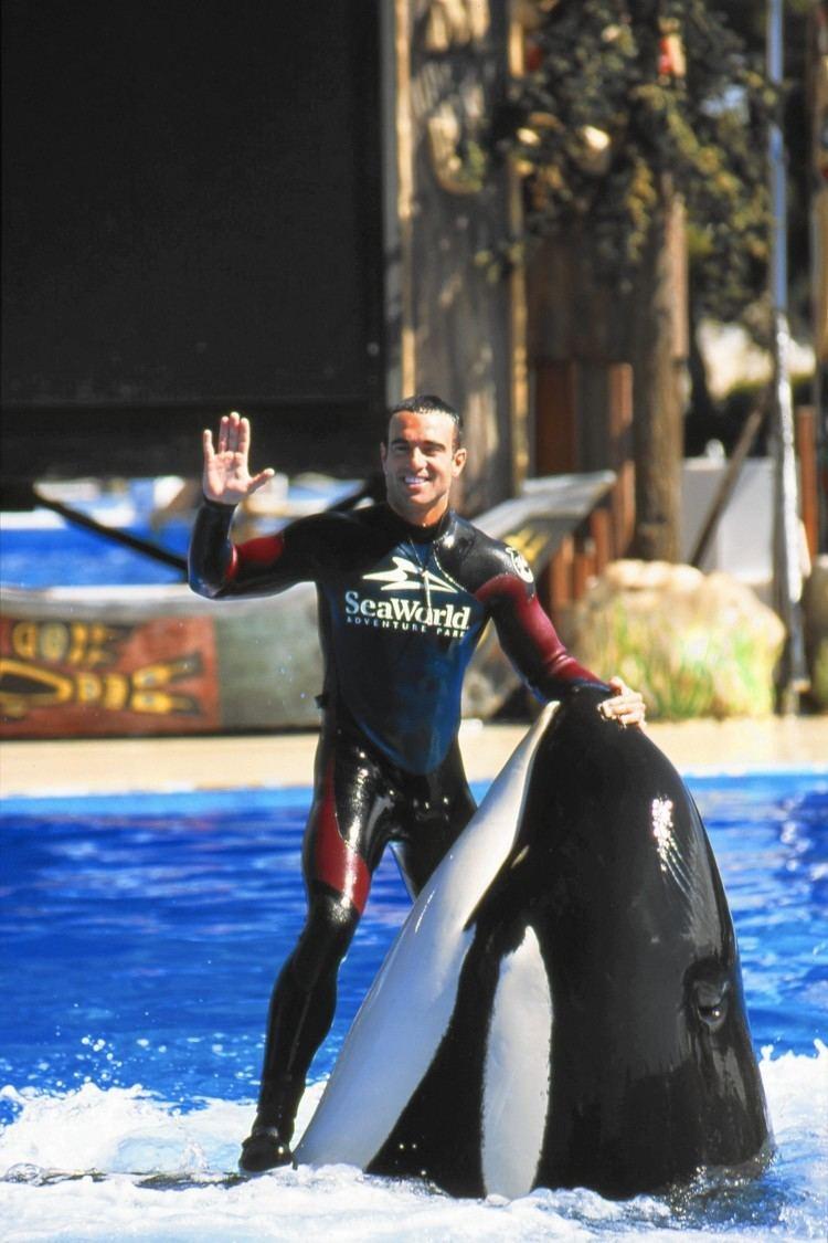 John Hargrove (orca trainer) ExSeaWorld trainer John Hargrove39s book reopens old