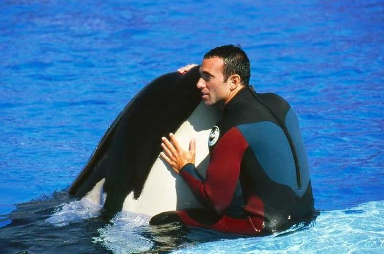 John Hargrove (orca trainer) I Was Disgusted39 How One Trainer Left The SeaWorld Horror