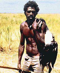 John Mawurndjul ngagovauAboriginalMemorialpicturesmawurnjpg