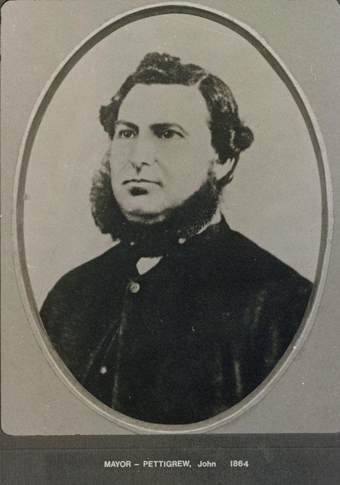 John Pettigrew (politician)
