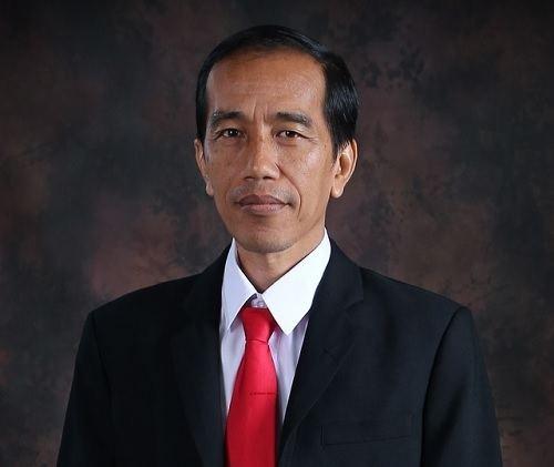 Joko Widodo What are Joko Widodo39s Economic amp Social Development