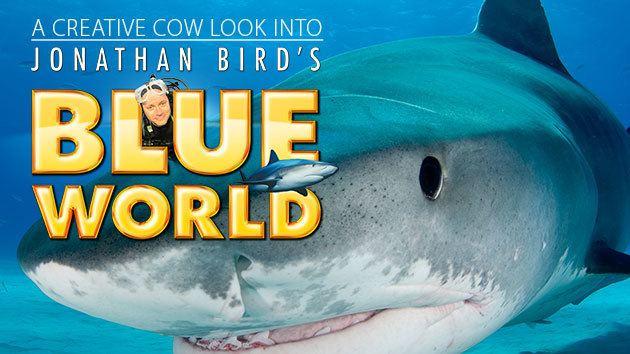 Jonathan Bird Jonathan Birds Blue World TV Movie Appreciation