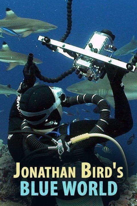 Jonathan Bird's Blue World wwwgstaticcomtvthumbtvbanners413197p413197