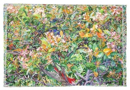 Joseph Raffael Joseph Raffael Art At Eighty Watercolor Watercolor