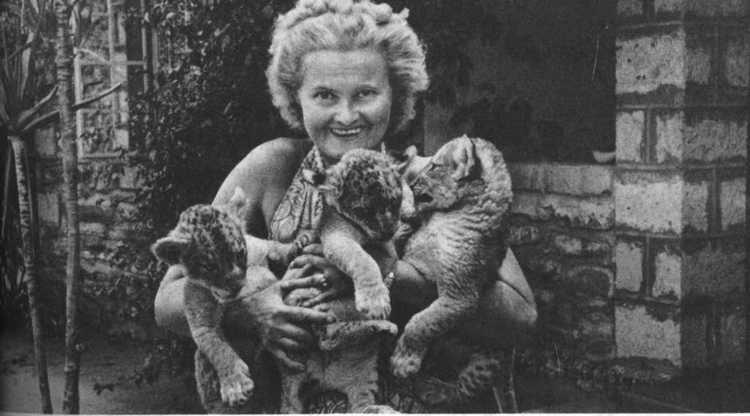 Joy Adamson Book Review Born Free by Joy Adamson