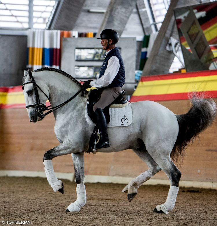 Juan Antonio Jimenez Los caballos de Juan Antonio Jimnez para el 2017 Plan de
