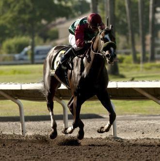 Juan Gonzalez (jockey) Song From Above looks strong in Juan Gonzalez Memorial Daily