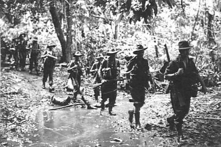 Jungle division