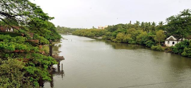 Kallayi (river) Kallai RiverOne of the charming rivers in Kerala Tourist Location