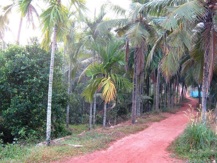 Kannur East