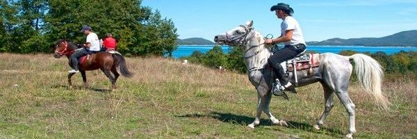 Karditsa in the past, History of Karditsa