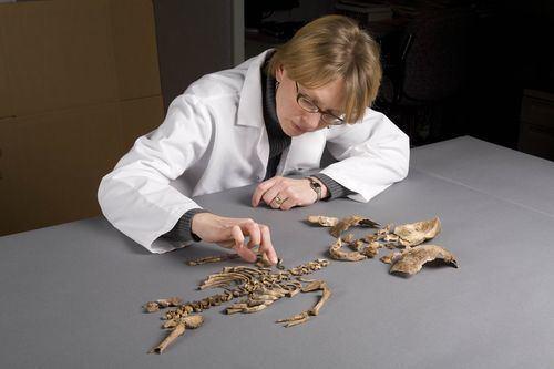 Kari Bruwelheide Seriously Amazing Women Kari Bruwelheide Rogers Archaeology Lab