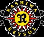 Kashiwa Reysol httpsuploadwikimediaorgwikipediaenthumbe