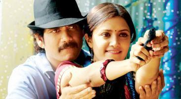 Kedi (2010 film) Kedi Movie Reviews Stills Wallpapers Sulekha Movies