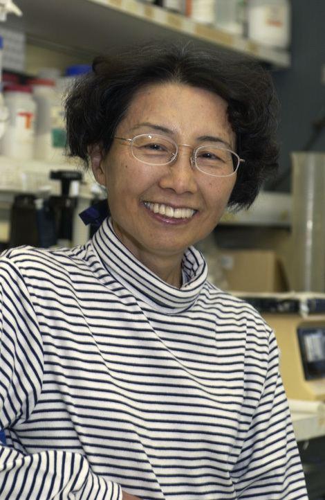Keiko Ozato Keiko Ozato Wikipedia