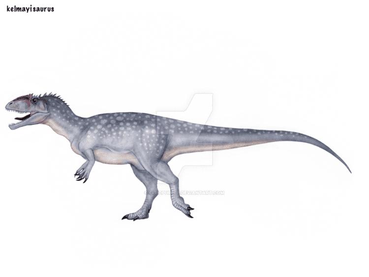 Kelmayisaurus Kelmayisaurus by cisiopurple on DeviantArt