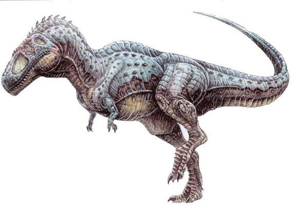 Kelmayisaurus Definition of a Kelmayisaurus Dinosaurs