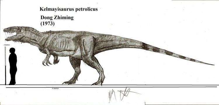 Kelmayisaurus imagesdinosaurpicturesorgkelmayisauruspetrolic
