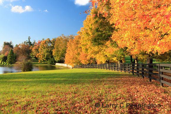 Kentucky Beautiful Landscapes of Kentucky