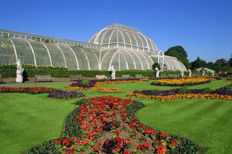 Kew Gardens Cash strapped Kew Gardens granted muchneeded 130m of Government