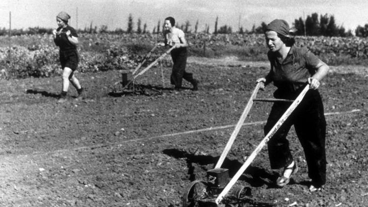 Kibbutz Privatizing the modernday kibbutz