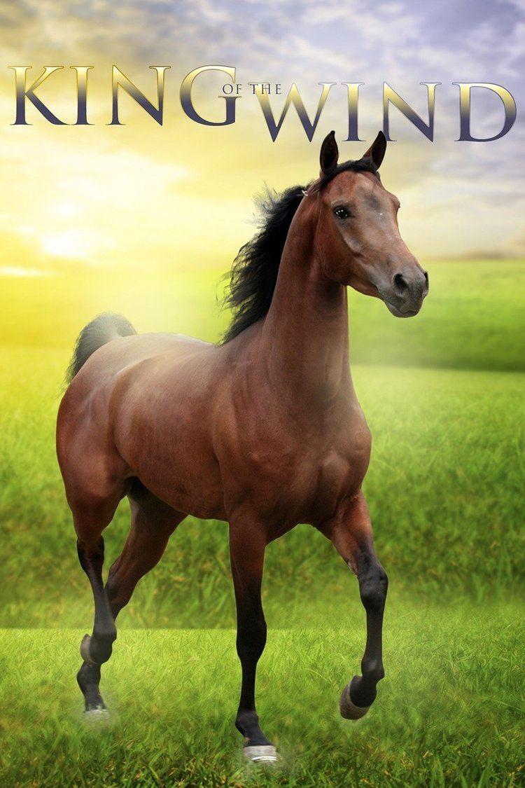 King of the Wind (film) wwwgstaticcomtvthumbmovieposters57120p57120