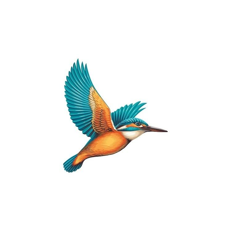 Kingfisher Alchetron The Free Social Encyclopedia