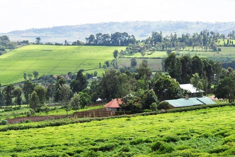 Kisii, Kenya Beautiful Landscapes of Kisii, Kenya