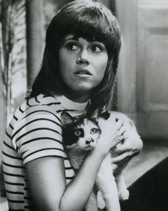 Klute Klute 1971 Cinema Cats