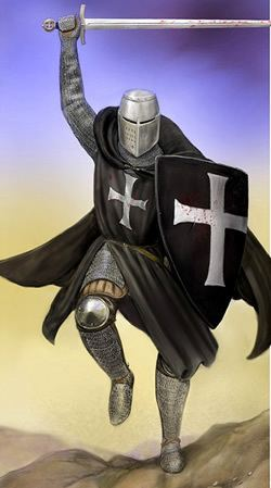 Knights Hospitaller Epic World History Knights Templar Knights Hospitallers and