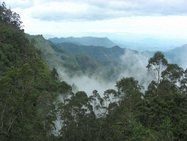 Kodaikanal Beautiful Landscapes of Kodaikanal