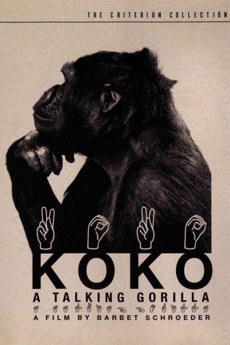 Koko: A Talking Gorilla wwwgstaticcomtvthumbdvdboxart43002p43002d
