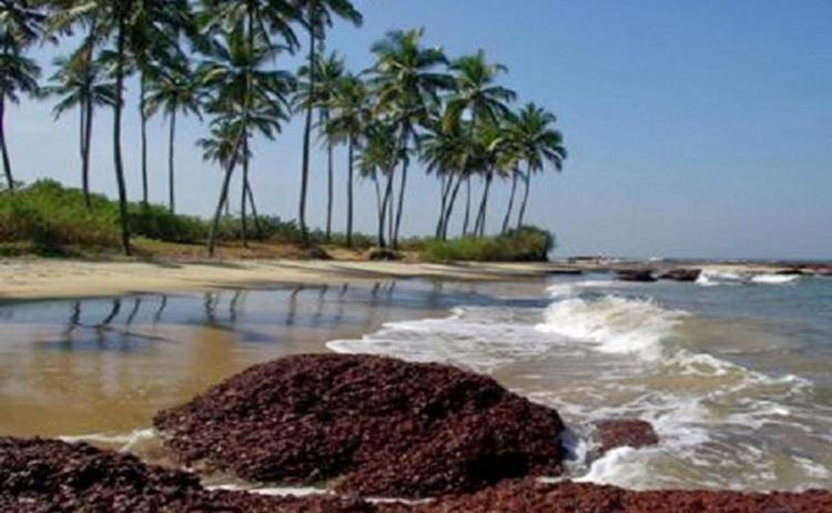 Konkan South Konkan Coastal Tour From Pune Thrillophilia