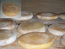 La Serena cheese httpsuploadwikimediaorgwikipediacommonsthu