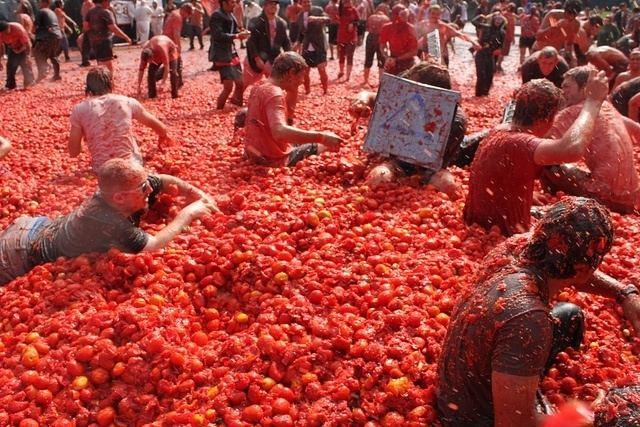 La Tomatina La Tomatina World39s Biggest Food Fight SuiteLife