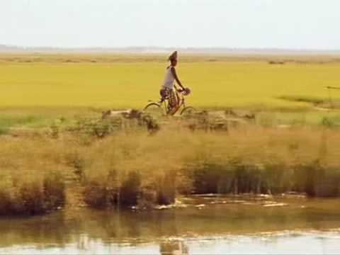 La Vie Sur Terre La vie sur terre Abderrahmane Sissako Folon Salif Keita YouTube