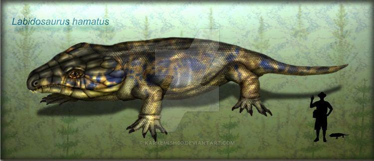 Labidosaurus Labidosaurus hamatus by karkemish00 on DeviantArt