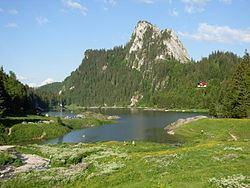 Lac de Taney httpsuploadwikimediaorgwikipediacommonsthu