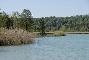 Lacs de Clairvaux httpsuploadwikimediaorgwikipediacommonsthu