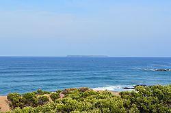 Lady Julia Percy Island httpsuploadwikimediaorgwikipediacommonsthu